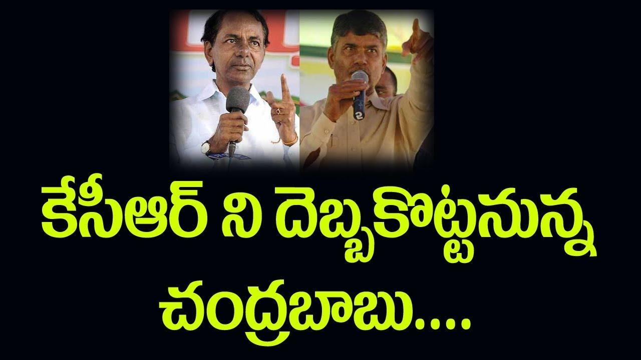 telangana-news-ap-news-early-polls-news-t-tdp-maha