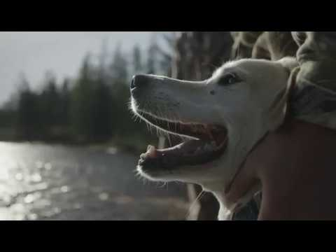 ARGO Anywhere Tiny Lodge on 2,000 private acres in Northern Wisconsin - Unravel Travel TV