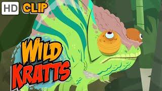 Wild Kratts - Chameleon Power