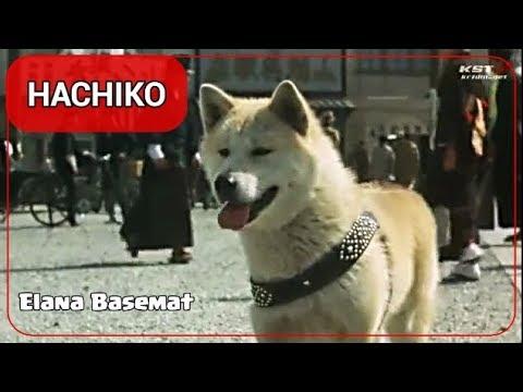 "HACHIKO Monogatari 1987 Film [7/11] ""Japanese Version ..."