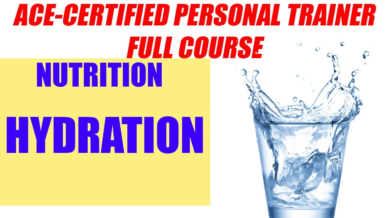 Ace Certified Personal Trainer Course Nutrition