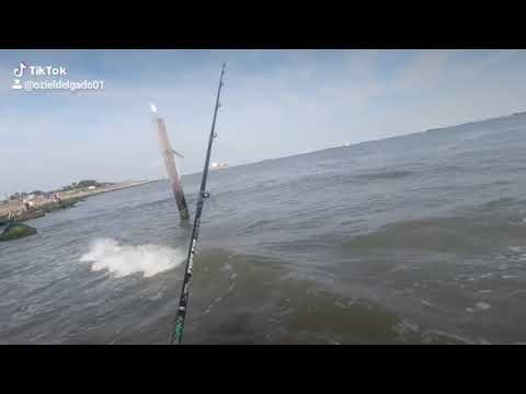 Galveston Fishing Red Fish, Flounder, Speckled Trout.