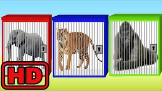 Kid -Kids -ZOO Wild Animals In cages/Animal Train/Learn Bugs Insects/Learn Colors Animation For Chi