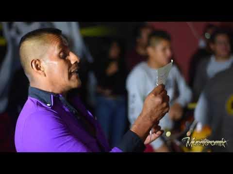 Brillante banda Jade, Mural Muertero en Guadalupe Etla 2017