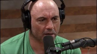 Baixar Joe Rogan on the New Zealand Shooting
