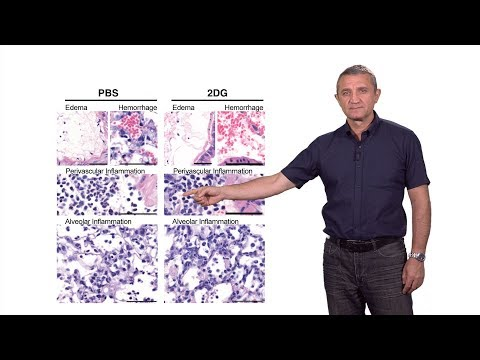 Ruslan Medzhitov (Yale / HHMI) 2: Inflammation and Disease Tolerance: Surviving Acute Illness