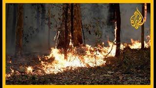 🇦🇺 حرائق الغابات بأستراليا تقتل 24 شخصا والحكومة تتعهد بإصلاح الأضرار