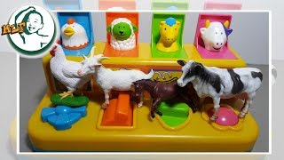 Learn farm animal name by a pop up toy