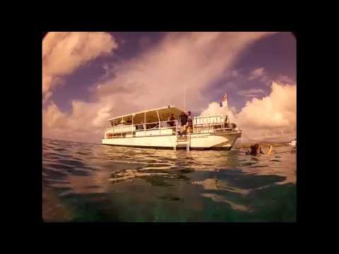 Scuba Diving - St. Lucia