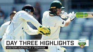 Paine shines with second ton before Marsh Bros fireworks | Marsh Sheffield Shield 2019-20