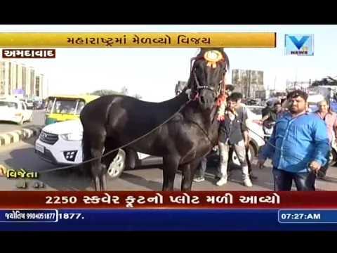 Horse-Dhanraj earns Lakhs per year, 2 core bid Speech | Vtv Gujarati