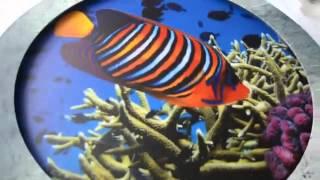 Интерьерные световые короба - лайтбоксы(, 2016-02-24T08:24:15.000Z)