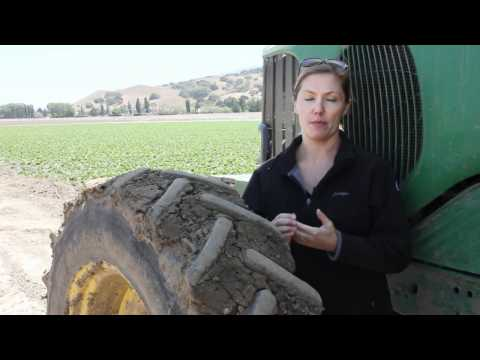 What Roles Can Women Play In Farming?
