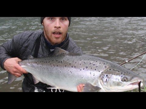 Laksefiske / Salmonfishing Naustdal 2012 Neteland  production HD