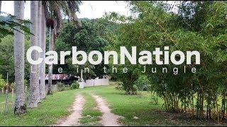 carbonnation new location tour the fruit jungle the garden of eden