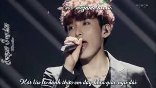 Download Video Vietsub + Kara Sen No Kaze Ni Natte   RyeoWook   Yesung ft Onew MP3 3GP MP4