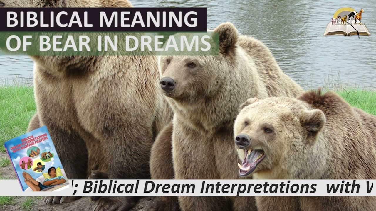 Biblical Meaning of BEAR in Dream - Spiritual and Prophetic Meaning