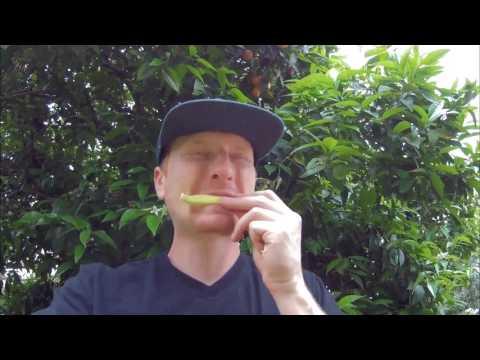 Вопрос: Как приготовить зеленые бананы?
