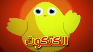 الكتكوت - طيور بيبي | Toyor Baby