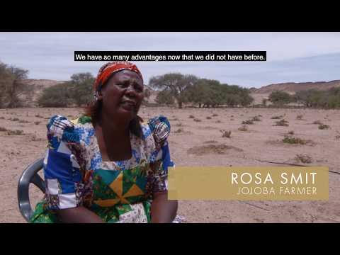 Namib Desert Jojoba, JOJOBA  FOR NAMIBIA TRUST, Festival