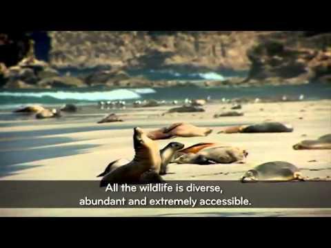 There's Nothing Like Australia, Kangaroo Island, South Australia   Upload