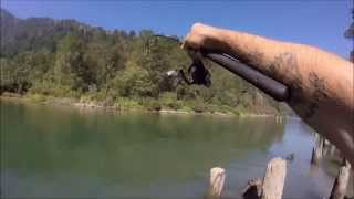 Gambar cover Down to the River - Pink Salmon 2015 British Columbia