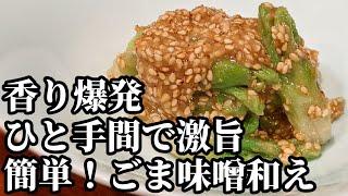 タラの芽 料理 レシピ☆天ぷらもいいけど!香りがヤバい♪ごま味噌和えも美味しいよね