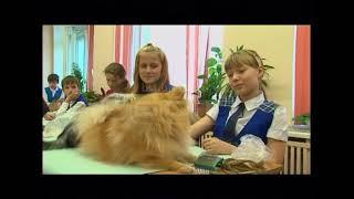 Ученики пятой школы пришли на урок с домашними животными