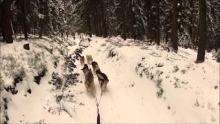 1 Schlittenfahrt 2013 Part1/3