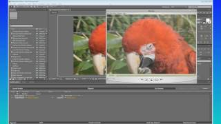 After Effects Quicktips #2 H 264 Gamma Correction