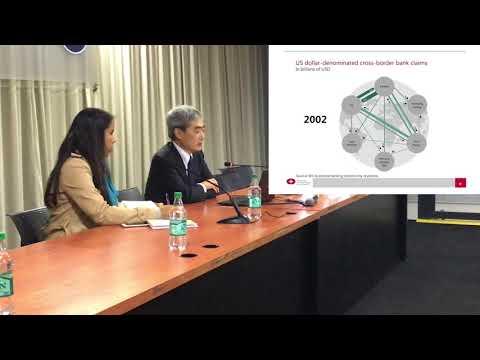 Redrawing boundaries in international finance   Hyun Song Shin   INET YSI