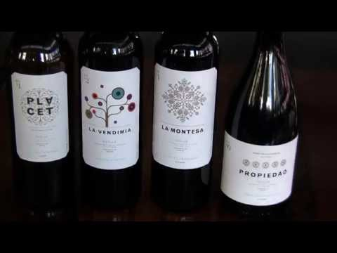 What You Need to Know About Spanish Wine with Alvaro Palacios