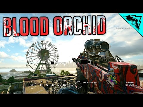 BLOOD ORCHID - Siege New Map and Operators LIVE NOOBING IT UP!