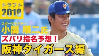 「補強ポイントは全部?!」スポーツライター・小関順二さんが阪神タイガースのドラフトを分析!