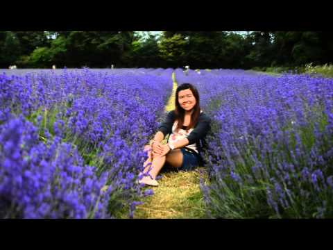 Mayfield Lavender Field Visit