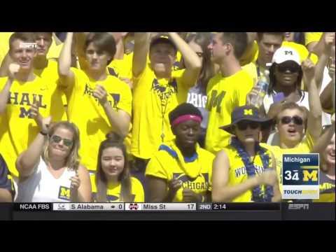 2016 Michigan Football Highlights v. Hawaii