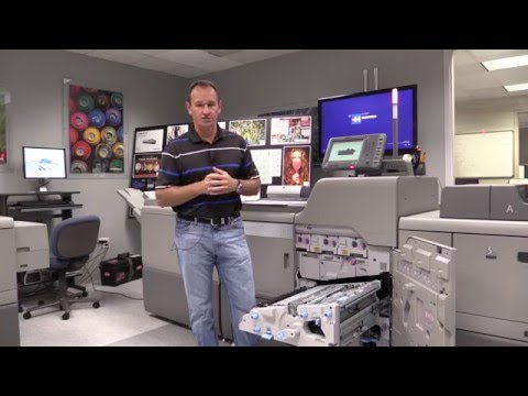 Linoprint CP And CV | Registration