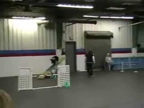 2012-02-25 AKC C4 - Artaius MACH2 movie.wmv