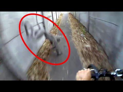 5 Video girati con una GoPro che ti faranno provare un brivido lungo la schiena