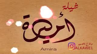 شيلة أميره 2017 شيله بأسم اميره
