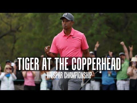 Tiger Woods In Contention | 3rd Round Valspar Championship