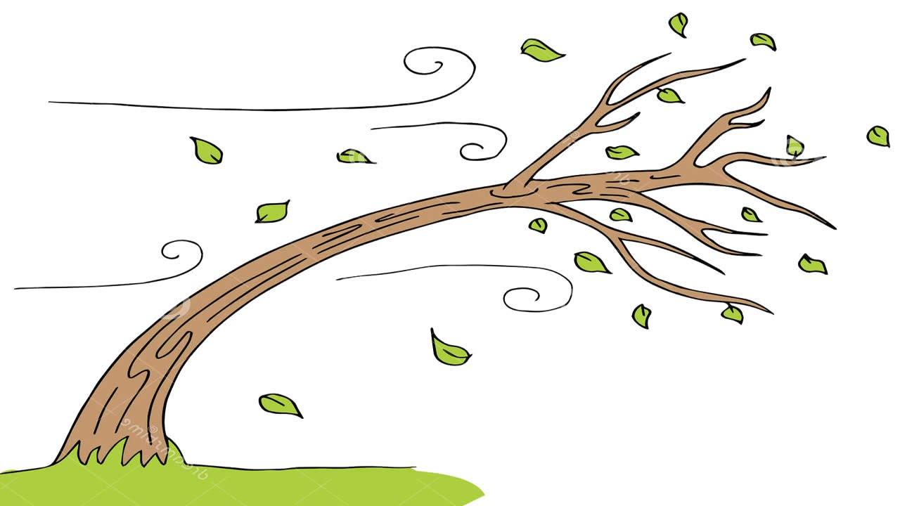 Wind Blowing Through Trees Clipart | www.pixshark.com ...