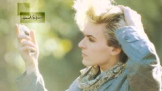 David Sylvian - Let the Happiness In