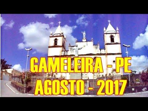 GAMELEIRA   PE   2017