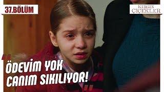 Büşra'nın, Kemal ile imtihanı! - Kırgın Çiçekler 37.Bölüm