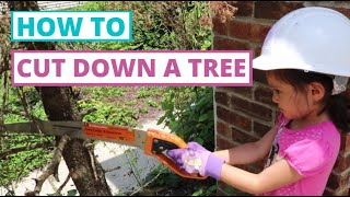 How To Cut Down a Tree (Episode 25)