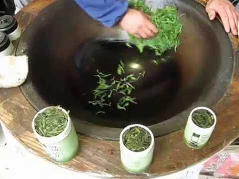 Hangzhou how to make Dragonwell Longjing tea master at work