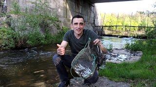 Рыбалка.Руфинг.Поймал большого ужа,рака и ёжика