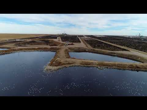 Ultimate Compilation: Drones Expose Factory Farming Across America