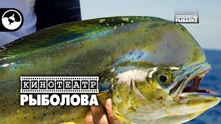 Остров рыболовной свободы. Кубинская рыбалка | Кинотеатр рыболова